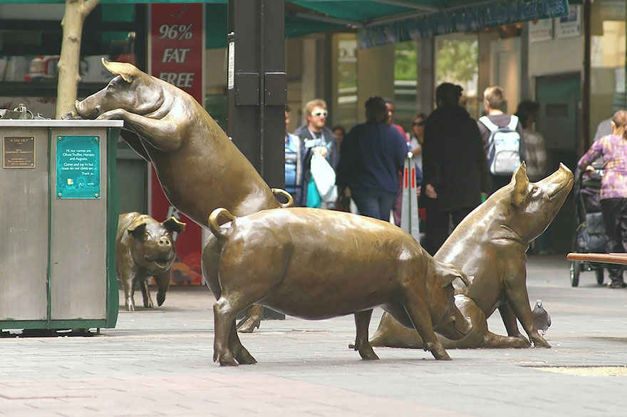 Los Cerdos Perdidos_Adelaida_Australia